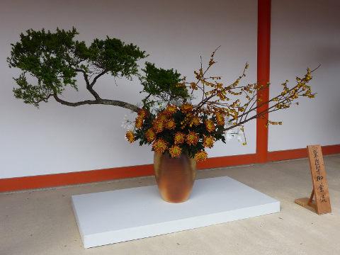 御室流生花