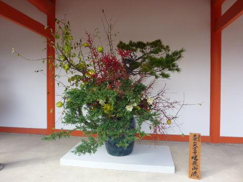 嵯峨御流生花